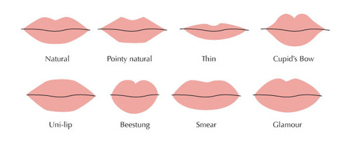 Lip shapes chart